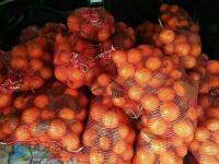 冰糖橙子一袋六斤左右,仅需9.9元