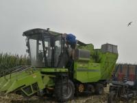 玉米收割机    打玉米机