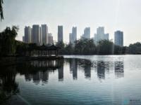 荆河公园手机随拍,美丽风光,健康生活!