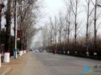 因滕龙路扩建需要,滕州将征收北辛、龙阳的7个村居的土地!
