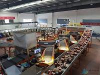 智慧物流产业园 为滕州经济和产业发展再添活力